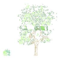 Cad Block of Tree and Bush elevation in dwg