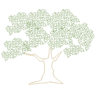 Cad Block of Olive tree prospect in dwg