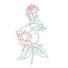 Cad Block of Roses, flowers in dwg