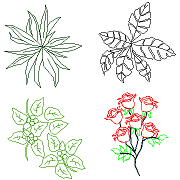 Cad Block of Houseplants, Roses in dwg
