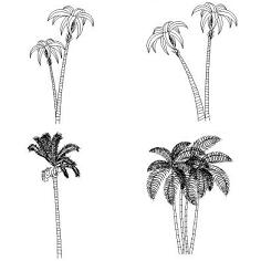 Cad Block of Palm trees in dwg